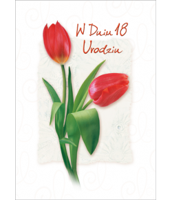 Kartka na 18-te urodziny KZ30